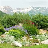 Natural Rock Garden Ideas 450x450 Natural Rock Garden Ideas
