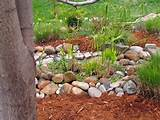 small rock gardens designs