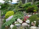 Rock Garden, The front hillside rock garden features two small ...