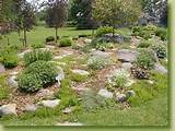 gardens rock gardens are designed to utilize a small amount of space