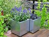 container gardening ideas for flowers attractive container gardening