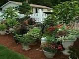 cool flower pots container garden ideas
