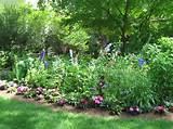 ... Perennial Garden Design Plans : Perennial Flower Garden Design Ideas