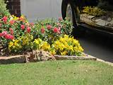 small flower bed decorating with amazing flower plants decorating