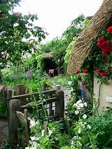 Home » Architecture » Inspiring Ideas for Best Cottage Garden Plants ...