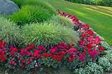 ... flower garden? Listed here are some easy-to-do tips for flower garden
