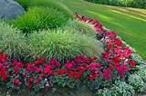 flower garden listed here are some easy to do tips for flower garden