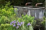 garden chelsea flower show 2010 great ideas for small gardens