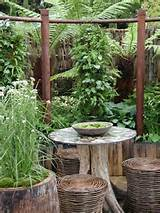 Small City Garden Ideas Galore at Chelsea Show