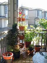 three small balcony garden ideas with different plants