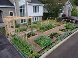 ideas with vegetable plants and wood fencing for small backyard garden