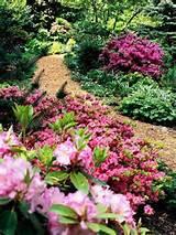 beautiful garden ideas flower gardens
