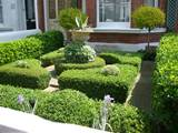 boxwood hedges surrounding a simple container of ivy and succulent