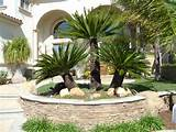 Tropical Landscaping Garden Ideas and Elements
