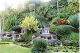 Tropical Hillside Garden Landscape Design