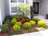 garden ideas florida