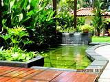 ... plants-arrangement-ideas-beautiful-pond-for-exterior-landscaping-ideas