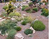it an ideal style of gardening for those who have limited space