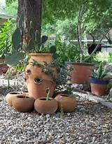 Garden, Sweet Cactus Plants In Cute Potterys And Fancy Small Stone As ...
