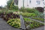 front yard vegetable garden ideas QlqsmmL9