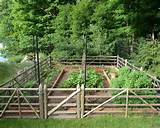 vegetable garden fencing ideas: Traditional Landscape Vegetable Garden ...