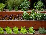 wallpaper raised vegetable garden ideas landscaping