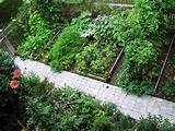 vegetable garden landscaping ideas vegetable garden landscaping ideas ...