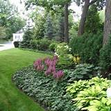 104,618 shade garden Home Design Photos