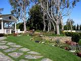 sprawling garden entry fountain courtyard view garden traditional