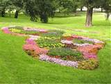 flower plants landscape decorating ideas for exterior garden landscape