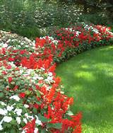 flower bed color scheme decorating ideas for exterior garden landscape