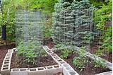 Gardening, Vegetable Garden Fencing Design Ideas: Inspiring and Simple ...