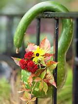... gourd to create a one of a kind fall vase for the porch or garden