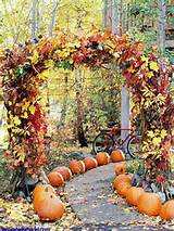 garden pathway ideas for fall 10 a garden path lined
