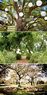 garden wedding decorations five approaches to decorate your garden