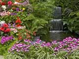 Garden-Summer-Garden-Gardening-Flowers-Gardening-Tips.jpg