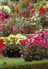 botanic gardens wales