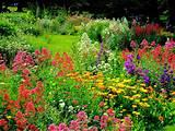 nglish style gardening