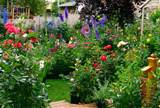 garden picture david goodgame alaskan english cottage style garden