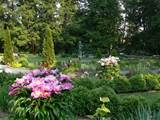 Description Prospect Garden Flower Garden 2 Princeton.jpg