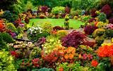 10 Beautiful Flower Gardens