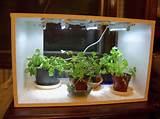 of all articles fluorescent lighting for your indoor herb garden