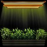 t5 indoor garden grow lights