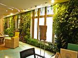 entrancing decorate indoor vertical garden drop dead gorgeous indoor