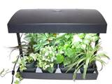 1001 gardens products grow light indoor garden for herbs