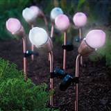 garden lights in your garden landscape and the blossoming solar lights