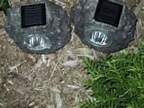solar powered accent led garden lights solar led accent garden