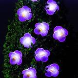 solar powered garden lights 10 pack pink flower led easy to use new
