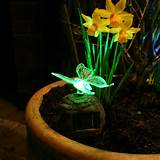 decorative solar lights for garden festive decorative solar lights