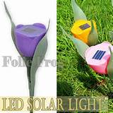 1pc purple tulip solar led light courtyard lawn garden decorative lamp